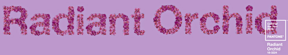 Screen Shot 2014-01-08 at 4.04.51 PM.png