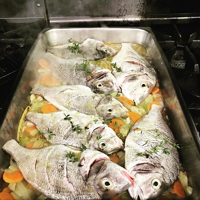 Saturday Family Meal. Fresh Whole Porgy from Connecticut Shoreline. Mirepoix and White Wine....7/21/18