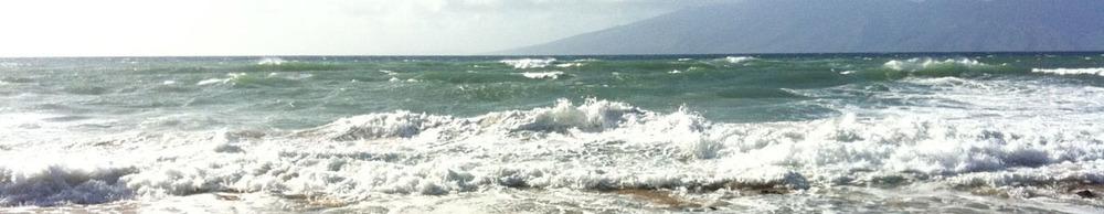 beach brochure.jpg