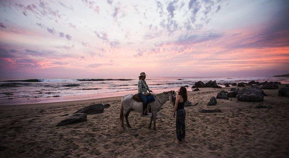 161-beach-horse-tour-a-octavio-a-pink-sky-a-present-moment-retreat-a-boutique-hotel-a-spa-resort-a-yoga-retreat-a-res.jpg