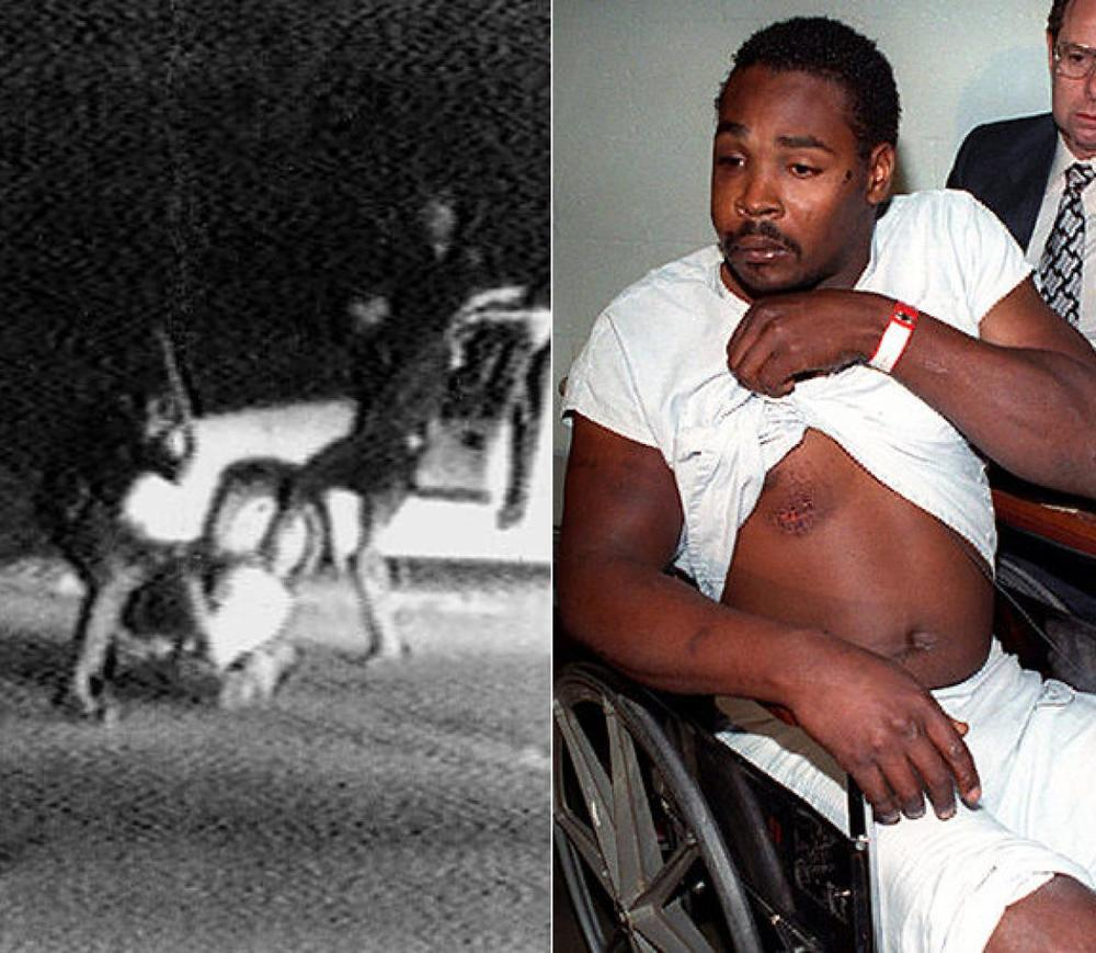 rodney-king-beating.jpg