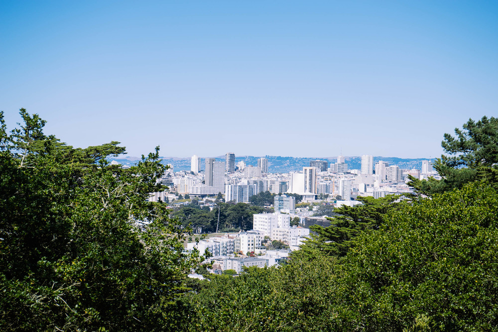 The view atop the hill at Buena Vista Park
