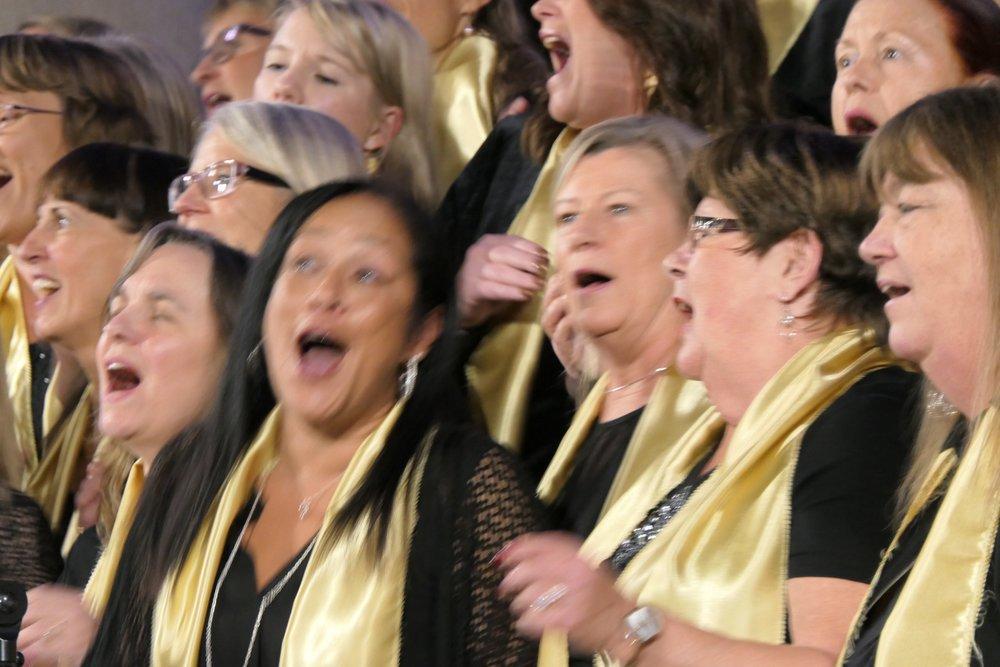 Upplev glädjen med din sångröst...