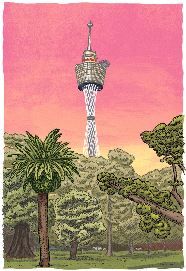Sydney Tower.jpg