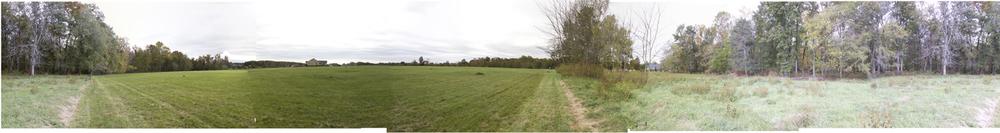 Field_Panorama1.jpg