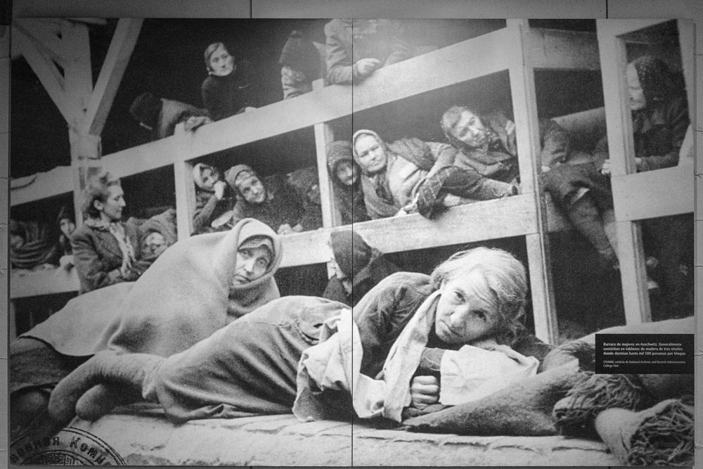 Women barrack at Auschwitz. Generally consisted of wood planks of three levels where up to 500 people slept per block.