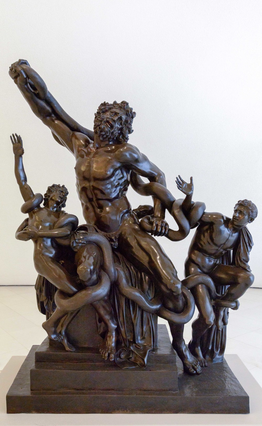 Laocoon and his Sons, Miguel Angel Buonarroti.