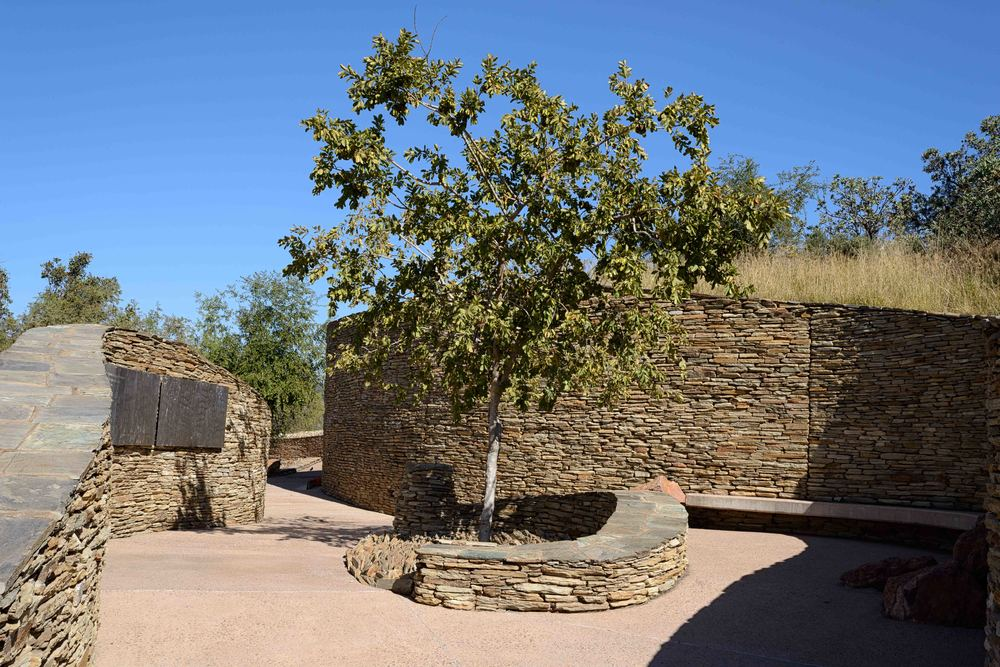 The Lekgotla, a meeting place around an Umlahlankosi tree.