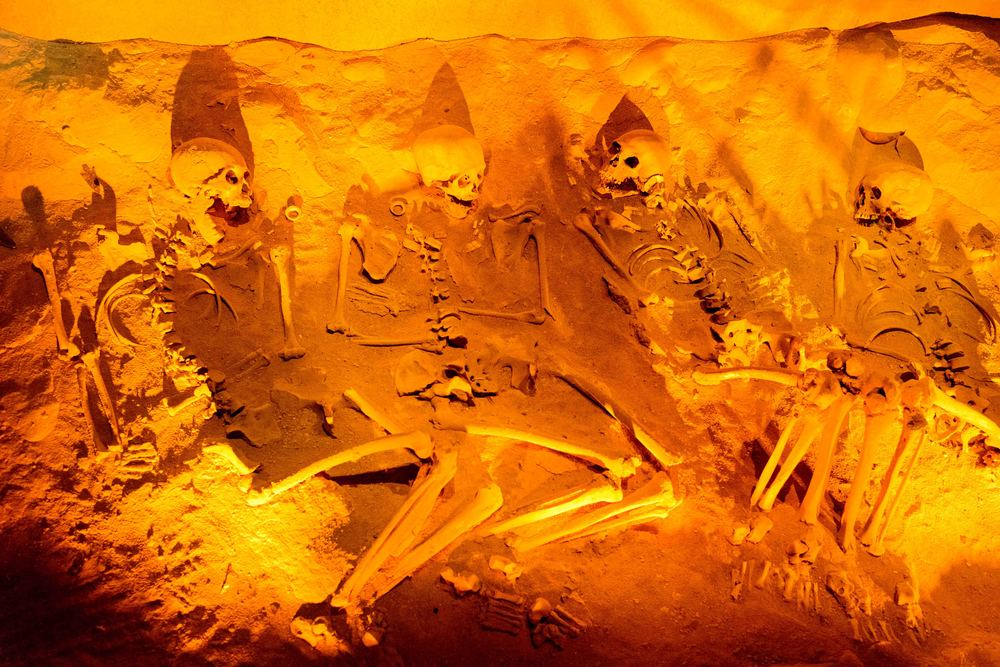"Burials found at the ""Temple of the feathered serpent"". This group of skeletons corresponds to four female individuals, whose ornamentation consists of earflaps of conch and necklace made of beads from the same material. Part of the offering consists of obsidian projectile points and slate disk positioned at the posterior, at the hight of the thigh."