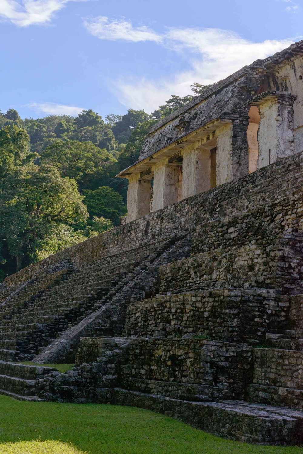 The Palace   , a complex of several connected and adjacent buildings and courtyards, was built by several generations on a wide artificial terrace during four century period. The Palace was used by the Mayan aristocracy for bureaucratic functions, entertainment, and ritualistic ceremonies. The Palace is located in the center of the ancient city.