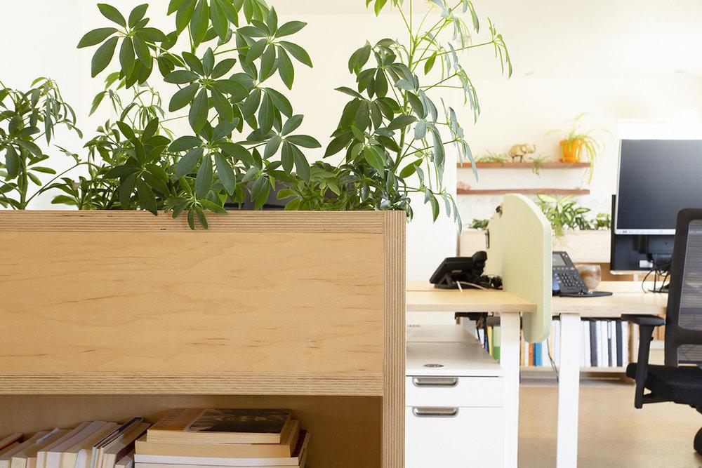 5_office_5.jpg