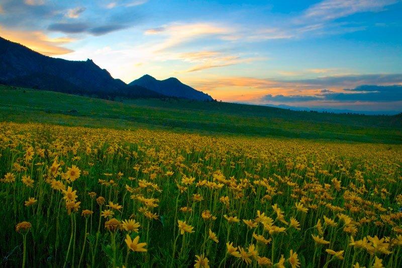 sunset_serenity.jpg