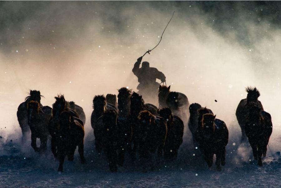 The Grand Prize Winner: 'Winter Horseman,' Inner Mongolia