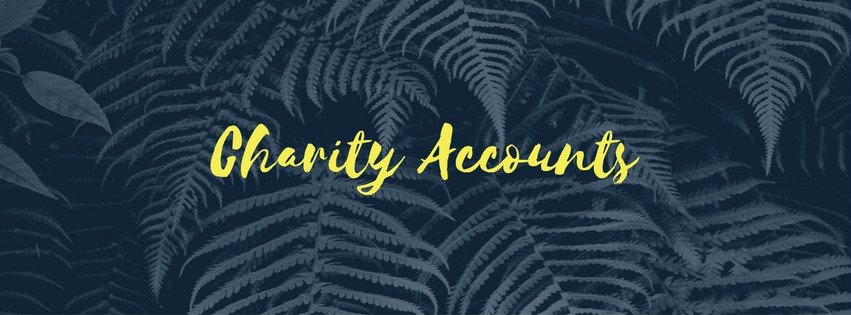 Charity Accounting
