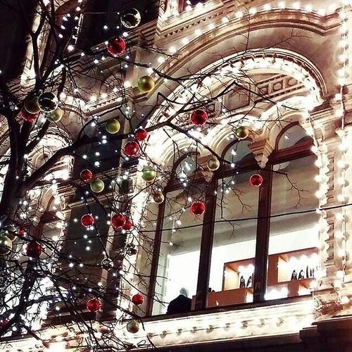 Christmas day12.jpg