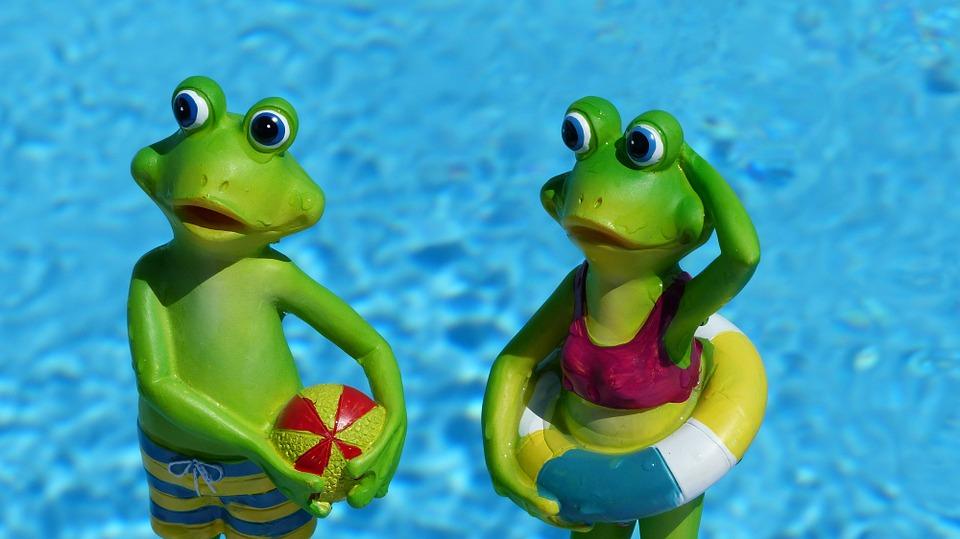 frog-830869_960_720.jpg