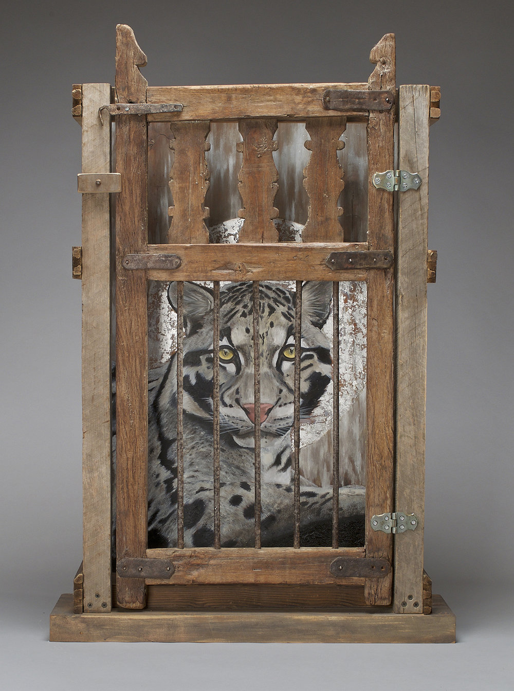 Formosan Clouded Leopard, Extinct 1983, 24 w x 38 h x 9 d""