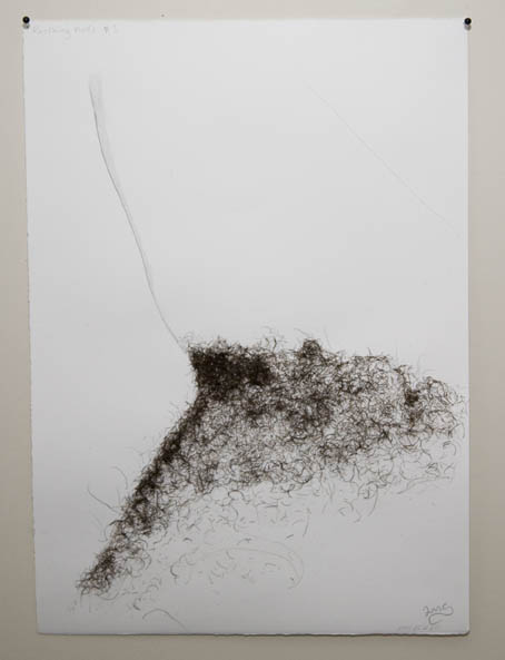 Lara Mumby-Croft, Reclining Nude #1. Facial hair, glue and pencil on paper, 250 x 350 mm