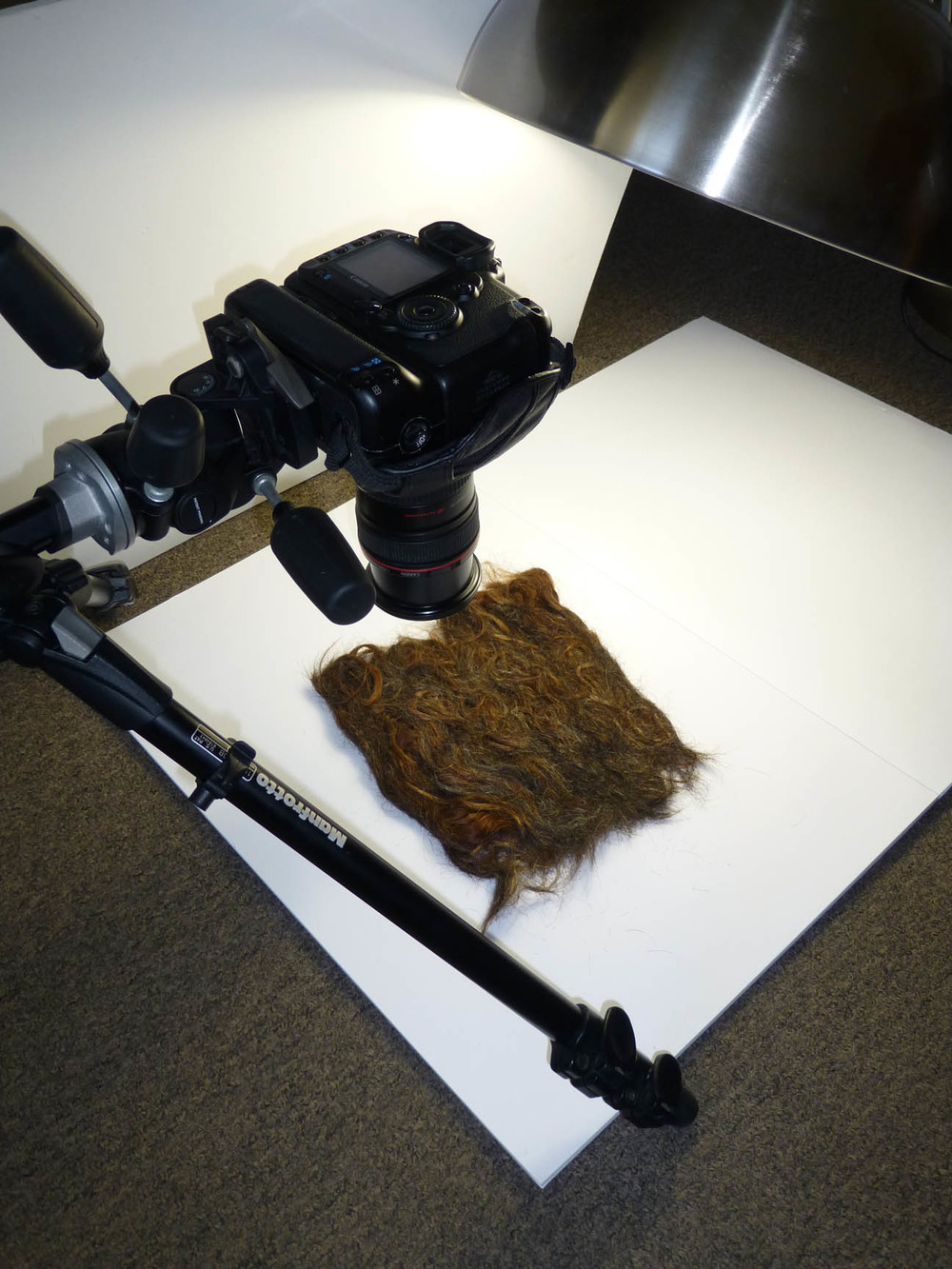 Lara Mumby-Croft. Contextual portfolio photo shoot. Mane (tile, human hair) 2013