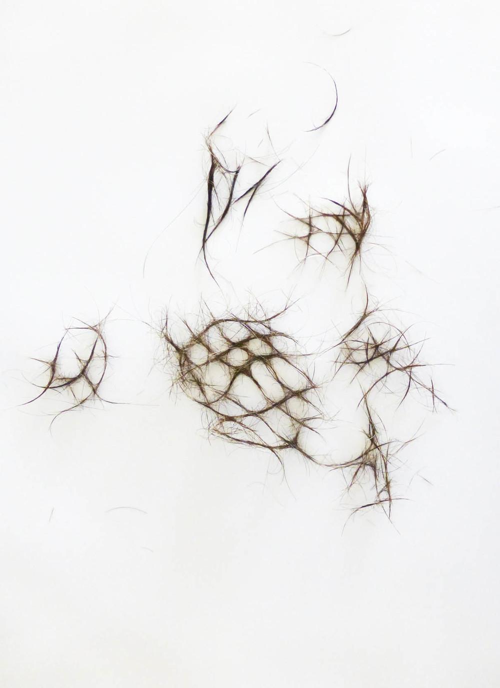 Lara Mumby-Croft, 2013. Hair Net, Degrade. (Digital photograph). Collection of the artist.