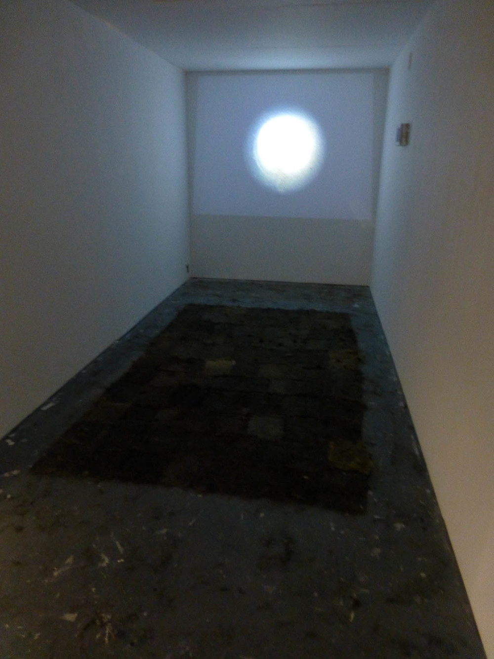 Lara Mumby-Croft. 2013. Transcending the Trivial exhibition space.