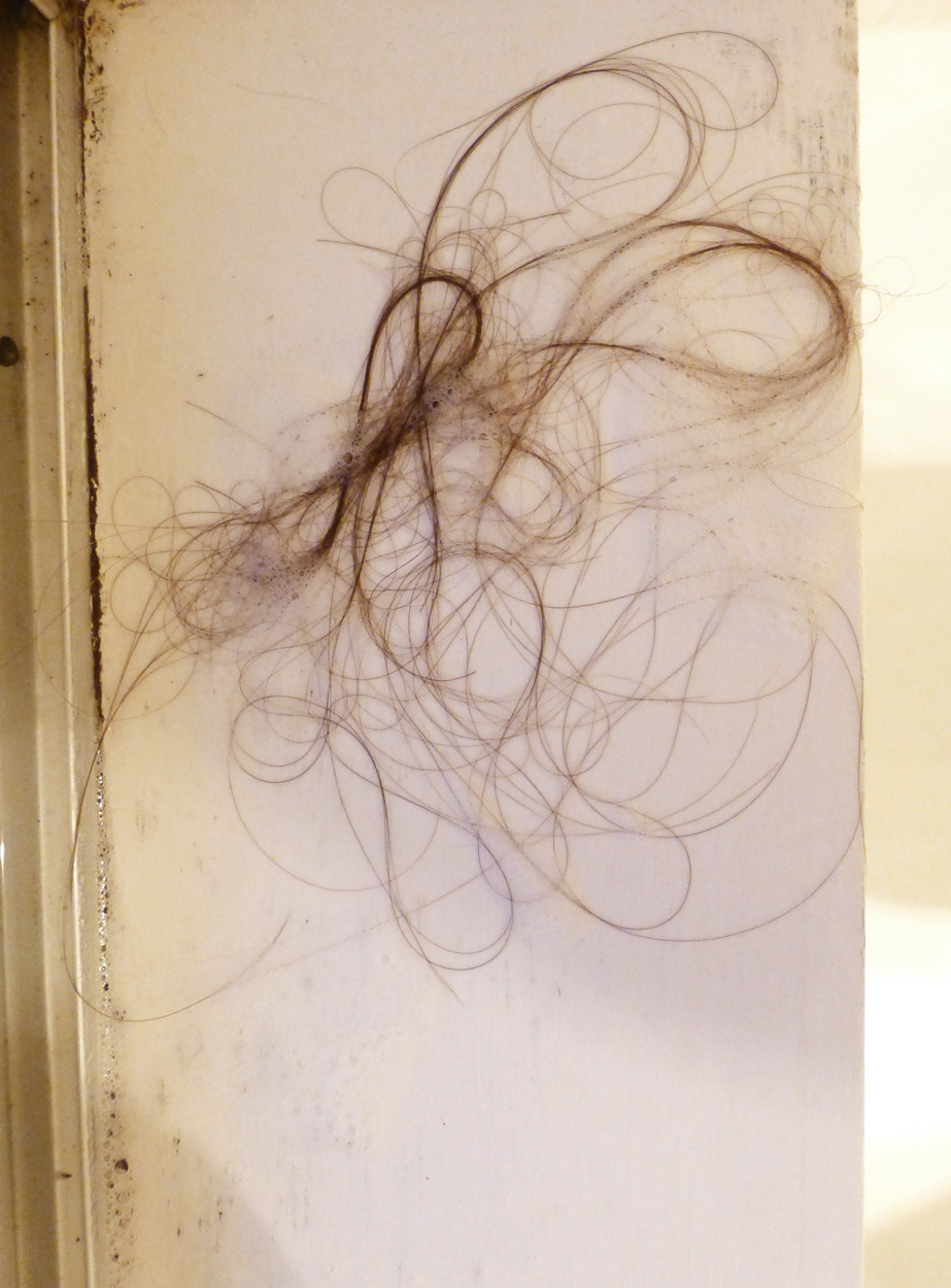 Lara Mumby-Croft. 2014. Hair #4 2014 (digital photograph). Collection of the artist.