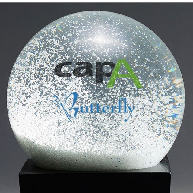 Wherever you are on the globe, may your holidays be merry and your new year be bright!  Happy Holidays from CapA!