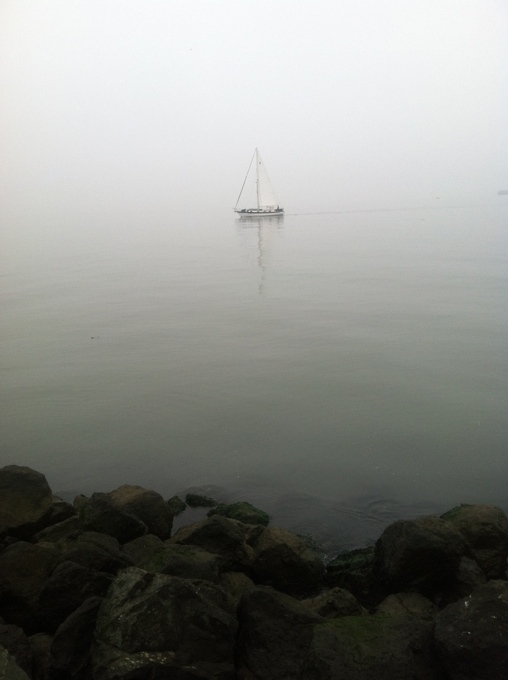 A lone sailboat on SF Bay at dawn