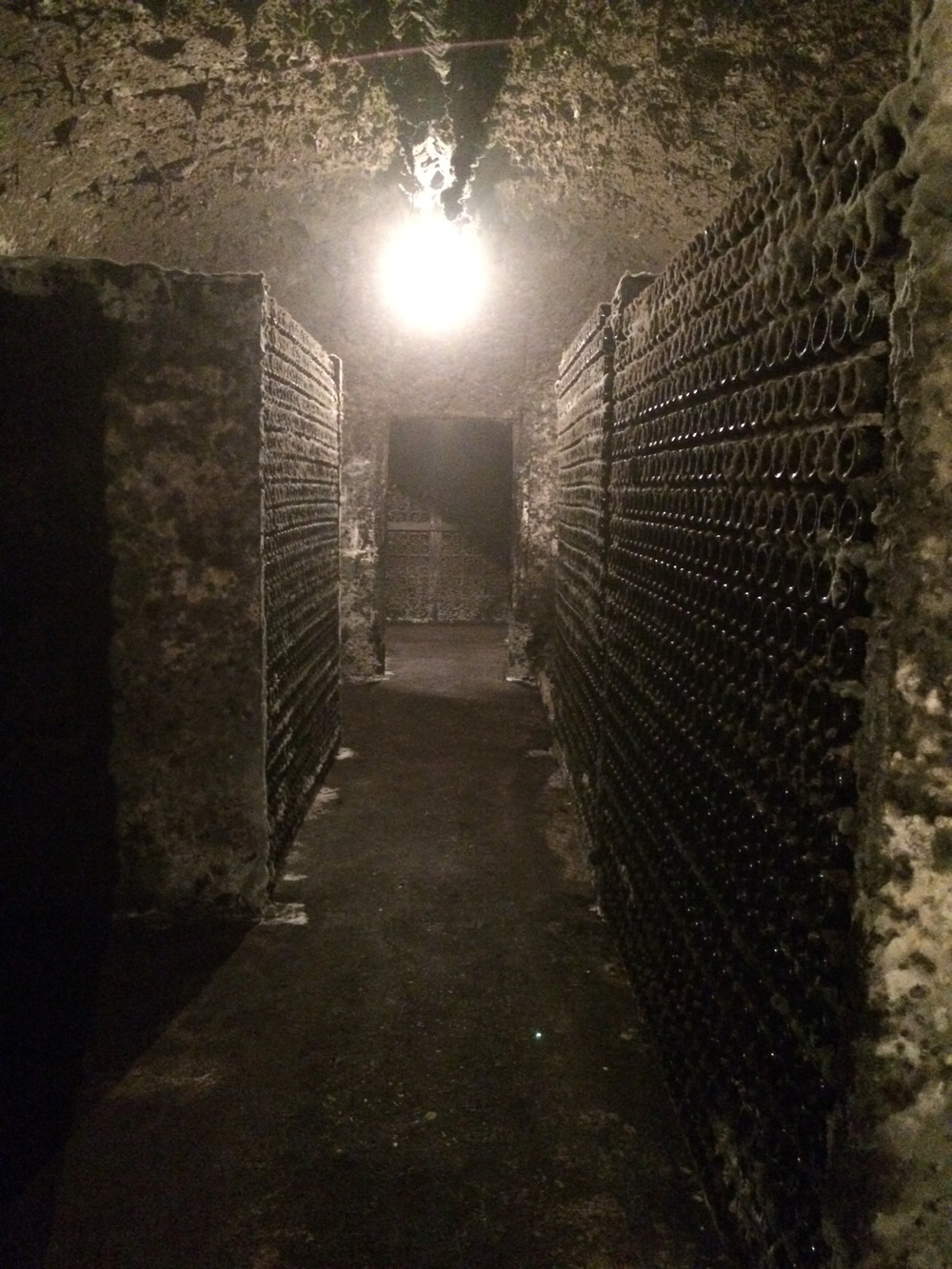 Bottles aging in the moldy cellar at Lopez de Heredia. Some of these wines are 100+ years old!