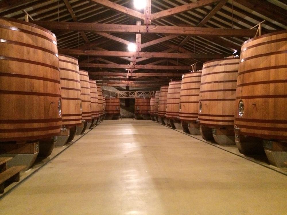 Giant french oak fermentation tanks at CVNE.