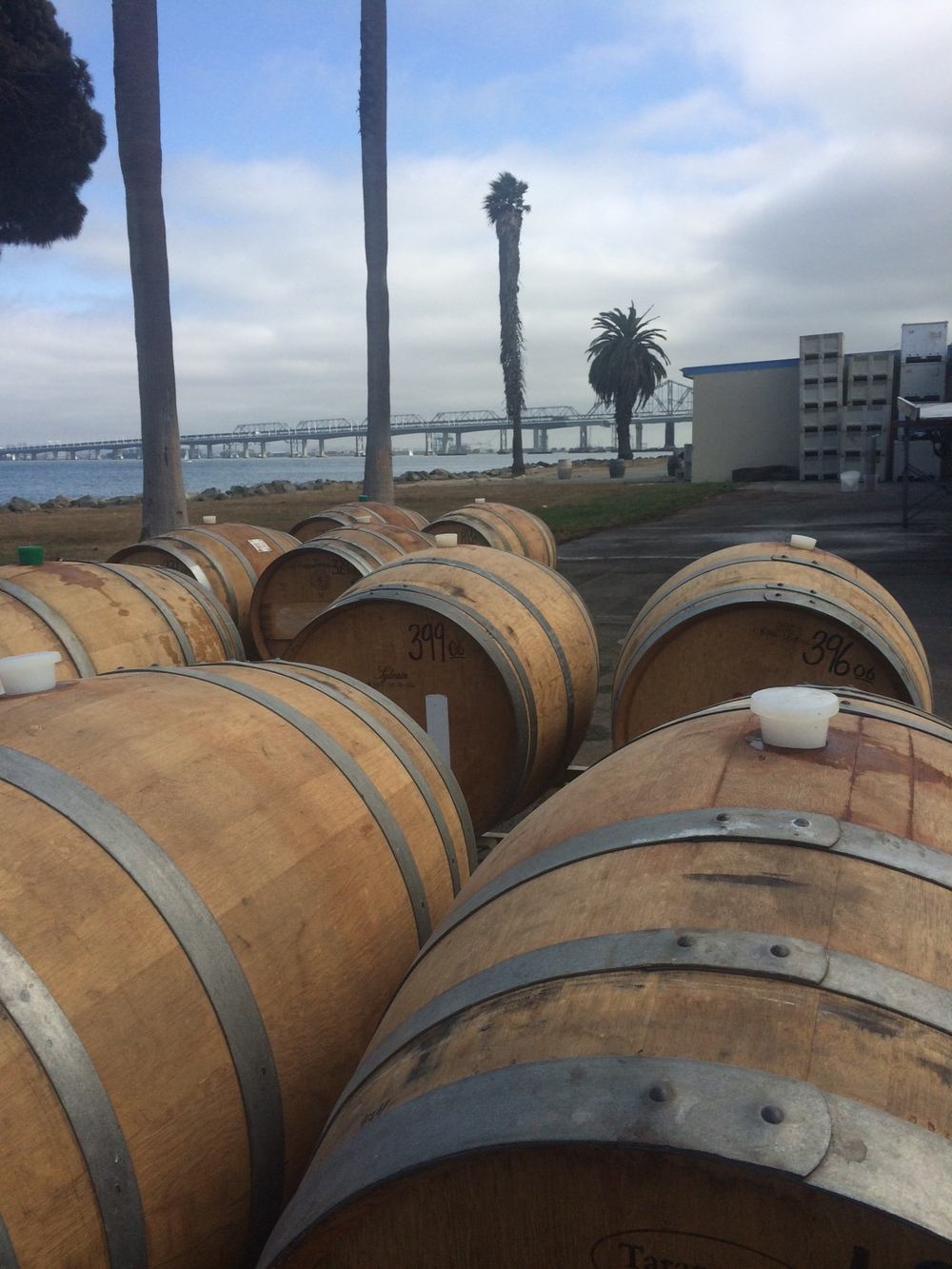 The last empty barrels of the year, waiting to be filled with the wonderful wines of the 2014 vintage