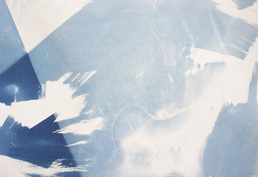 [detail] - 24x18in, cyanotype on paper, 2017