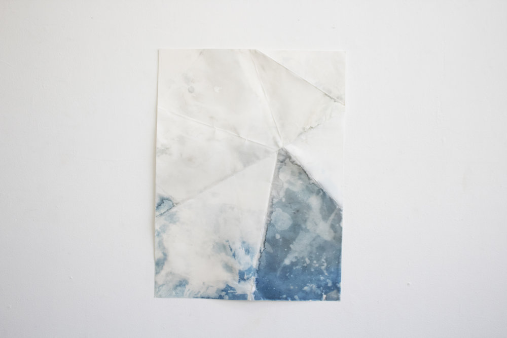 24x18in, cyanotype on paper, 2017