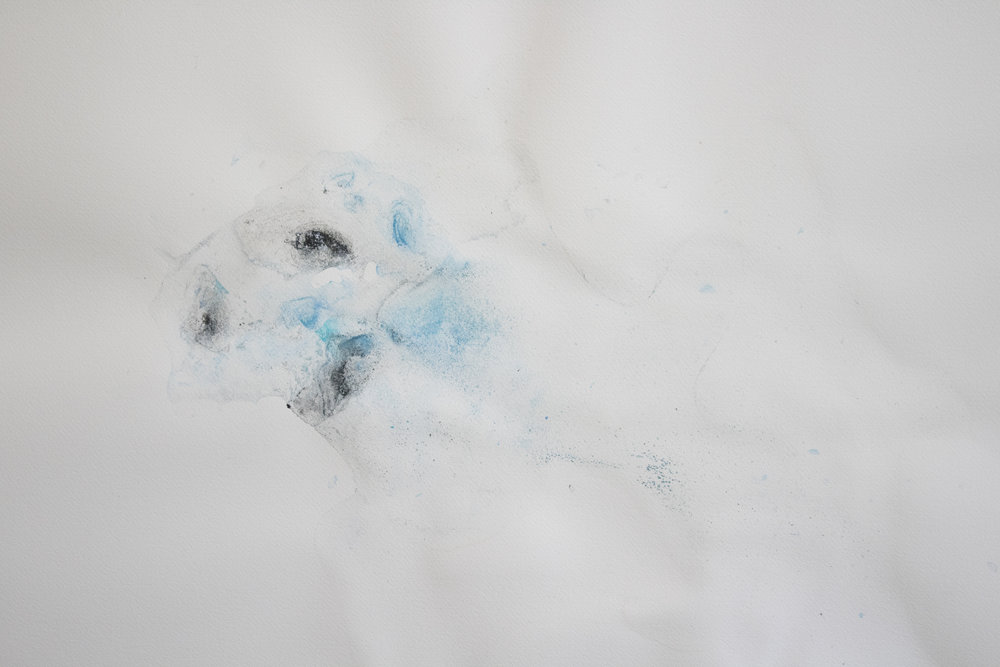 [detail] - 22x30in, ice (water, watercolor, charcoal) on paper, 2017