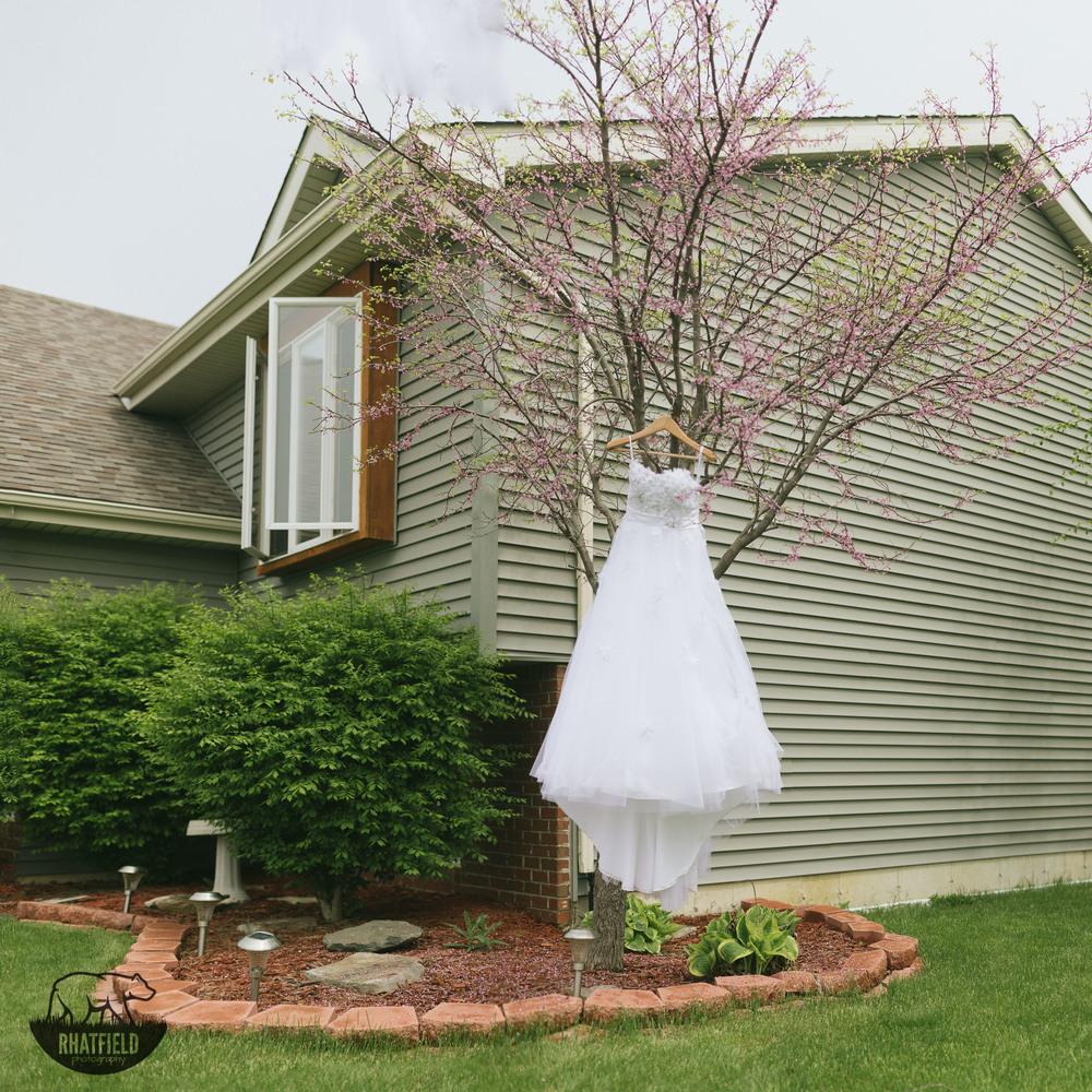 wedding-dress-hanging-tree