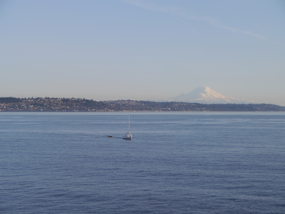 Beautiful Mount Rainier in the distance.
