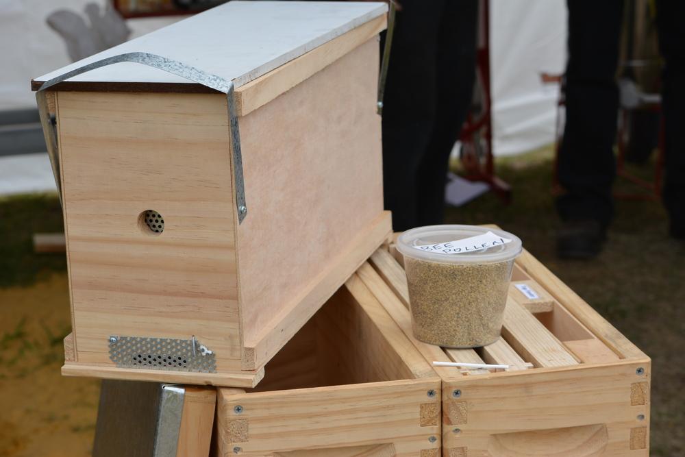 Honey Festival 2014 281.JPG
