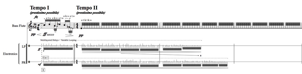 Click on the image to see An Excerpt of the score for Sur les debris for Bass Flute and Electronics.