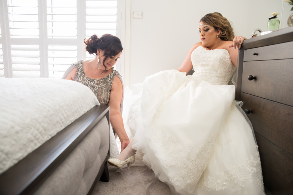 Mark&Elena's Wedding-5257.jpg