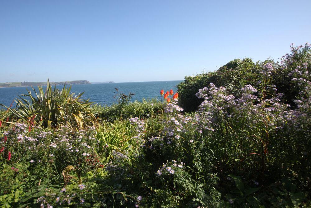 portscatho garden