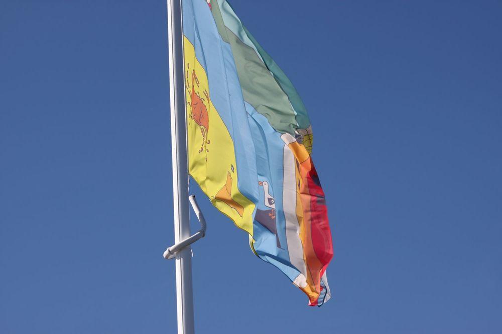 flags 4.jpg