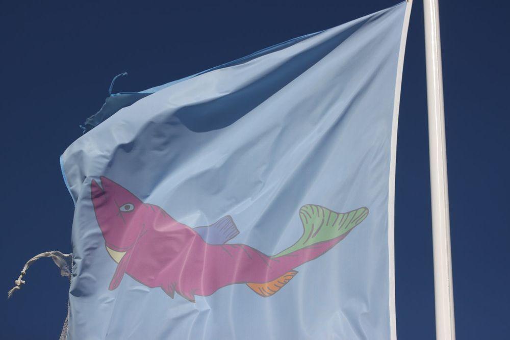 flags 5.jpg