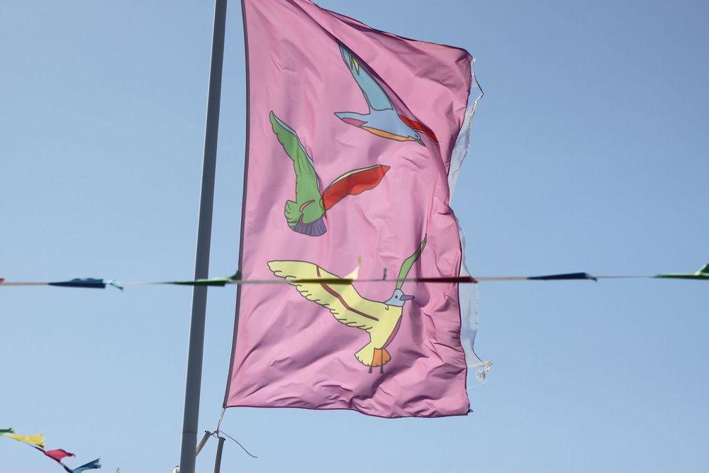 flags 7.jpg
