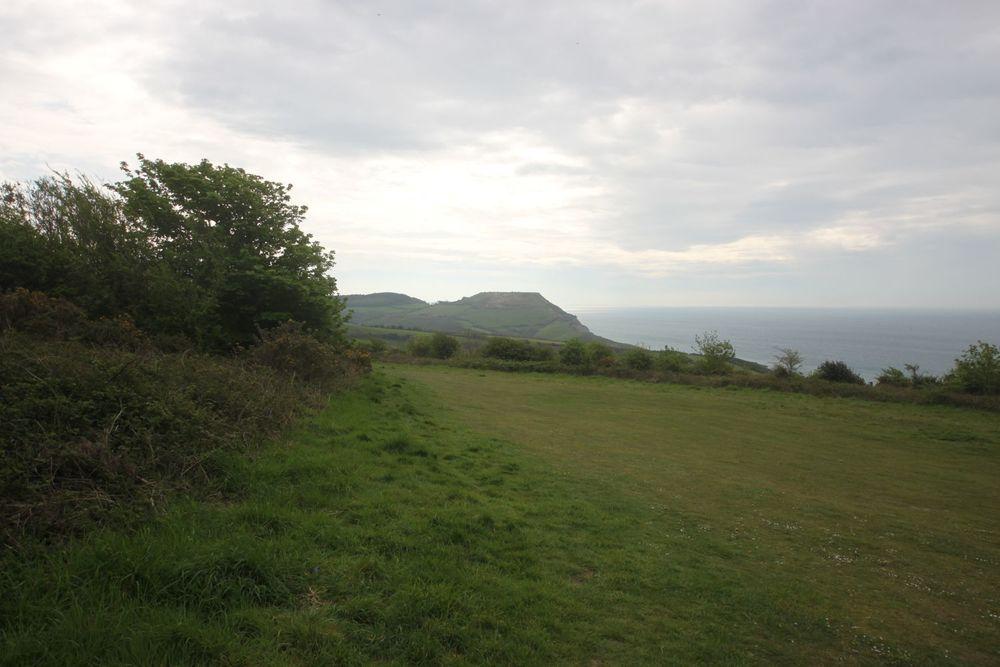 view to golden cap