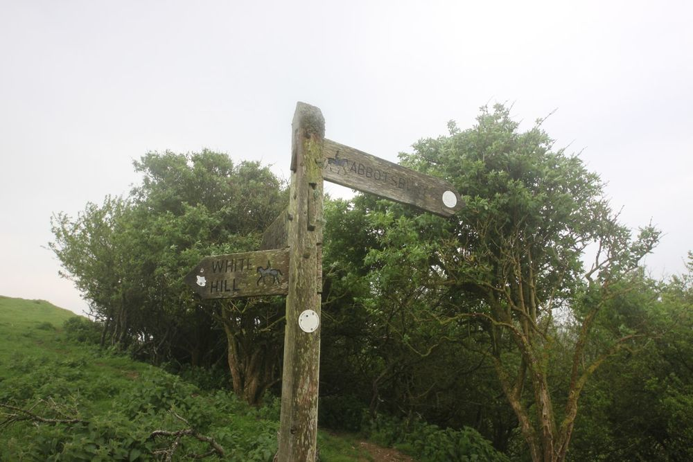 abbotsbury half a mile