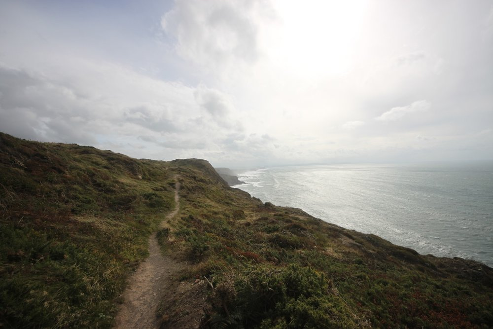 the path to steeple point