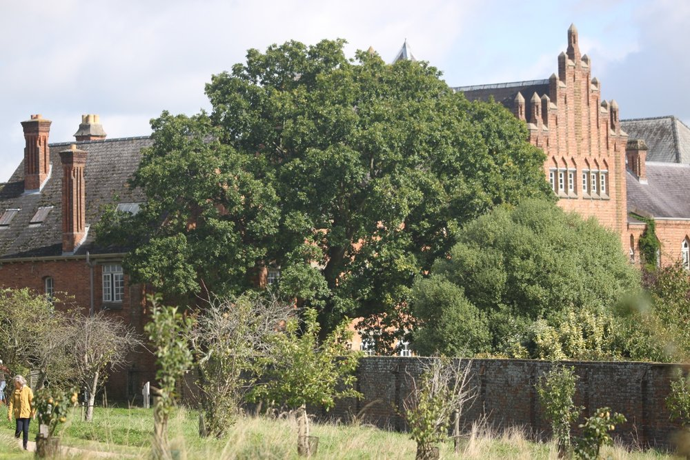 quarr abbey 10.jpg