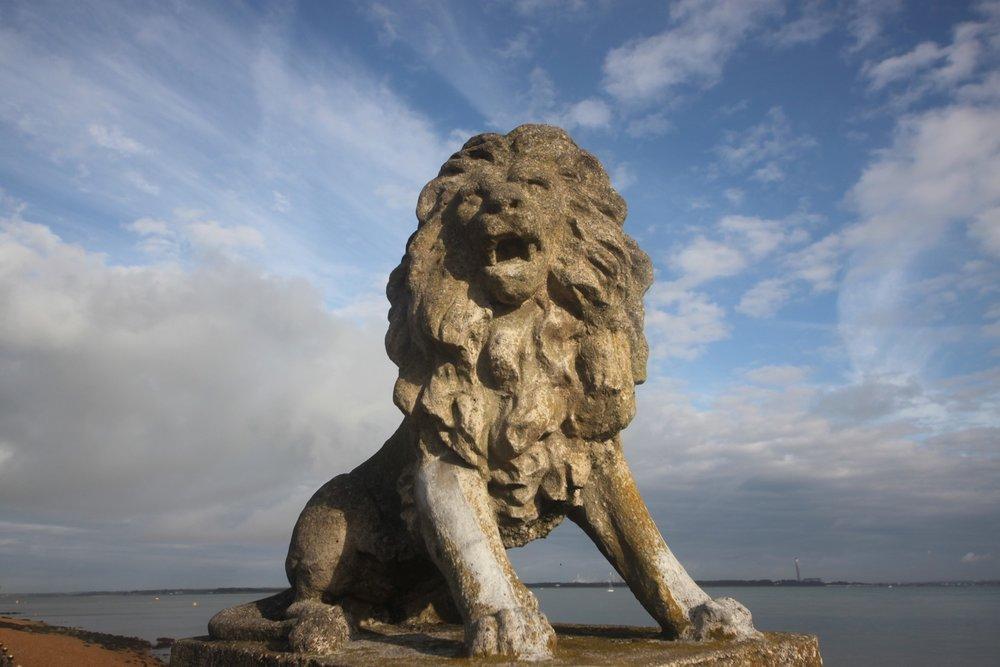 lions 1.jpg