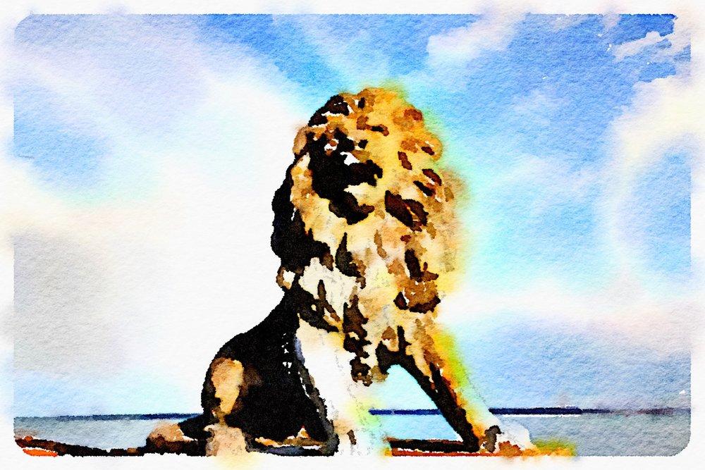 lion on egypt esplanade