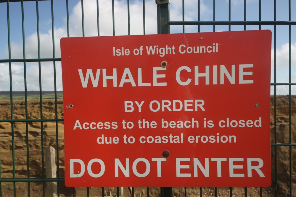 whale chine